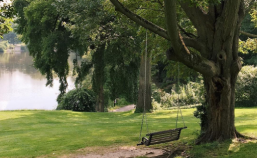 Photo of an empty swing hanging next to Paradise Pond at Smith College.
